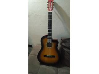 Guitarra Palmer, Puerto Rico
