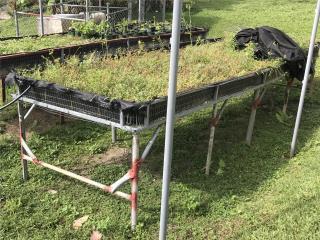 Bancos para siembra, Puerto Rico