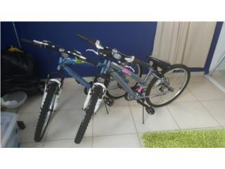 Bicicleta 20, Puerto Rico