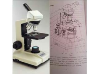Microscopio , Puerto Rico