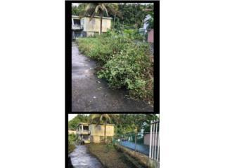 Limpiez de Patios, Puerto Rico