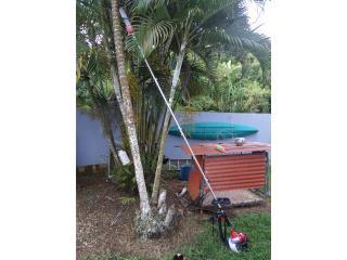 Combo de jardineria, Puerto Rico