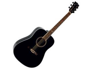 Guitarra Eko , Puerto Rico