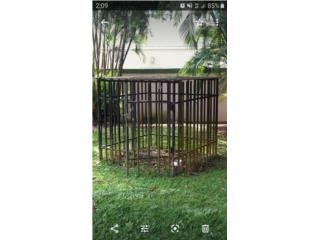 Jaula 6x6 $200, Puerto Rico