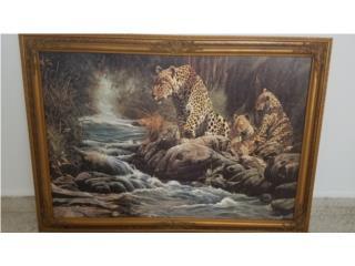 Cuadro de Leopardos, Puerto Rico