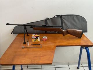 Rifle de pellets, Puerto Rico