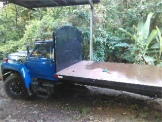 Camion de plataformsa, Ford Puerto Rico