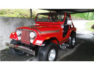 Jeep CJ 5 año 1971, Jeep Puerto Rico