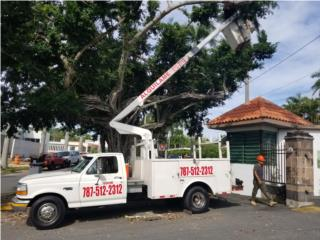 CANASTO PALQUILER CON CHOFER 35', Ford Puerto Rico