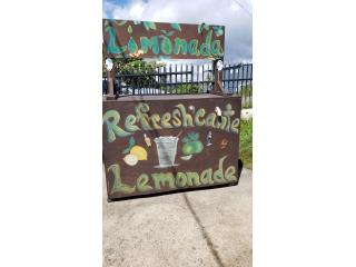 Puesto  de limonadas, Otros Puerto Rico