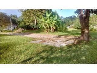 Bienes Raices Brooksville  Florida