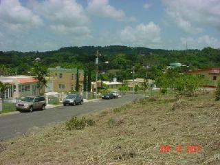 Solar, Urb. Paseo de Algarrobo, Aibonito