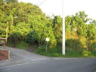 Hoconuco Carr.358 KM 1.7