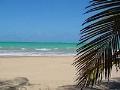 Puerto Rico Clasificados Online