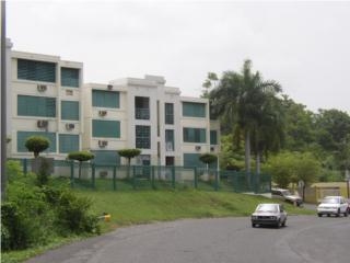 Interamerican Court