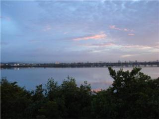 Point Lagoon