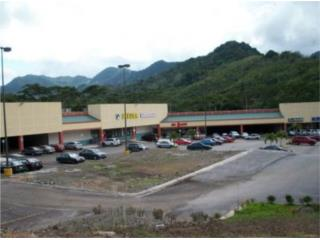 Adjuntas Plaza Shooping Center