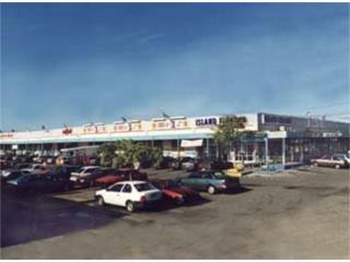 Arecibo Plaza Shopping Center