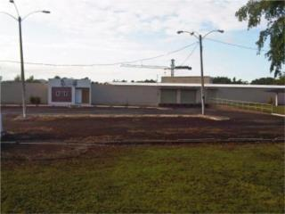 Caguas Warehouse and Lot
