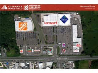 Spaces for Rent in Western Plaza, Mayaguez