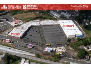 Spaces for Rent in Trujillo Alto Plaza