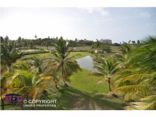 Villas de Golf, Dorado del Mar