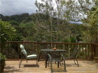 Hacienda Margarita - Huge terrace, pool, bar