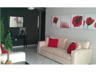 Torre Vista apartments, penthouse 3c,2b $700