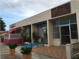 Villa Blanca, edificio.com. Calle Muñoz Marín
