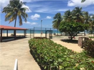 Marbella Del Caribe Desde Un Mes En Adelante