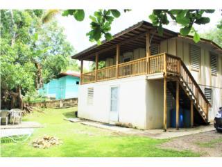 Bo Puntas Behind Casa Verde