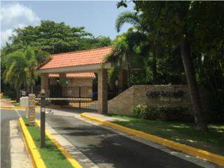 CasadelMarBeachResort, 2/2, $800,Amueblado