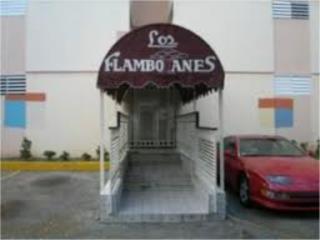 CONDOMINIO FLAMBOYANES, TERCER PISO $400