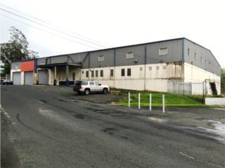 Edificio Industrial - PR 152 Naranjito
