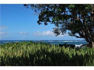 Chalets de la Playa/Garden apt./Furnished
