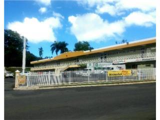 Centro Comercial en Cupey 1,200 p/c