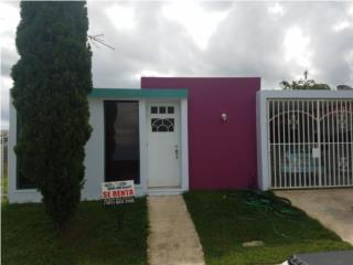 Alt de San Pedro - Solo $550