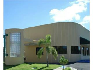 Yauco Gallery