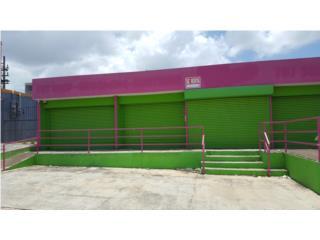 ave.lomas verde bayamon  625p/c  local C-1