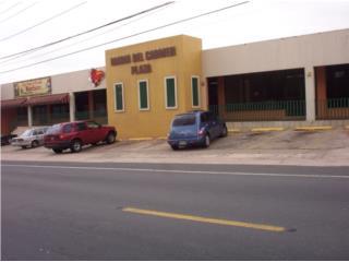 Espacio Comercial Maria del Carmen 1,250 p/c