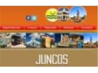 Laderas de Juncos, 3/1, $550 renta y compre