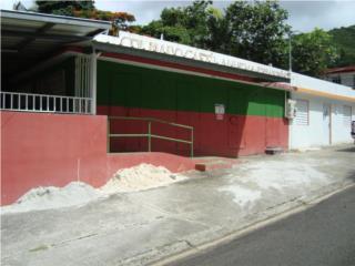 Local con permisos. Bo Corazon, Guayama