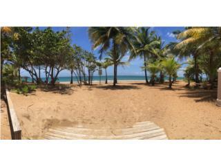 Bosque del Mar, Las Picuas