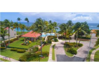 Privileged View and Location at Dorado Reef!!