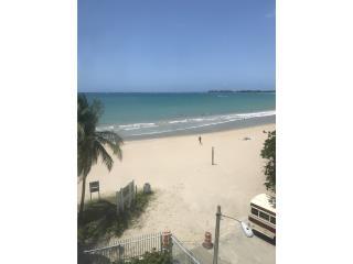 Pine Grove, Playa 2h-1b $1,400