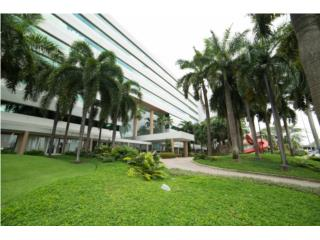 Centro Internacional de Meradeo- Alquiler