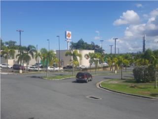 ***PAD 2,000 m2 PLAZA TROPICAL***