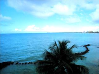 Gorgeous Ocean Front View!
