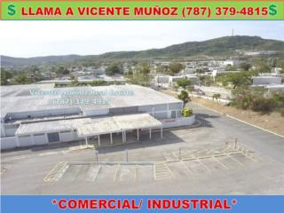 AMPLIO LOCAL COMERCIAL/ INDUSTRIAL