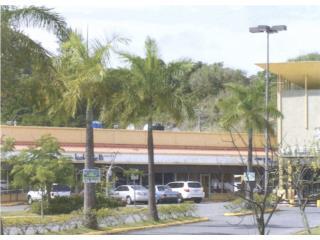 La Fuente Shopping. Toa Alta